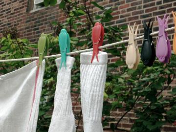Birdclothespins