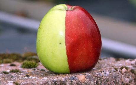 Apple-460_1488245c