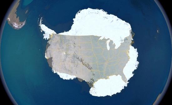 Morsels_antarctica