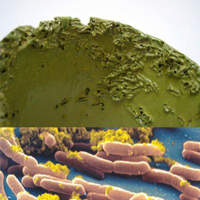 980-architecture-design-muuuz-contamination-tamsin-van-essen-ceramic-8