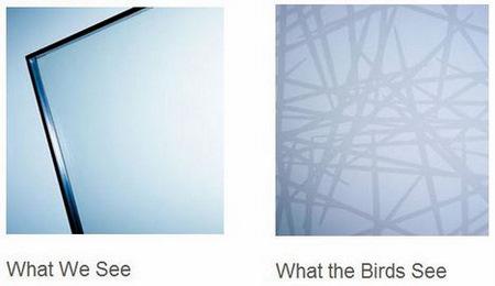 Ornilux mikado bird friendly glass