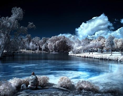 Infrared-tree-lake