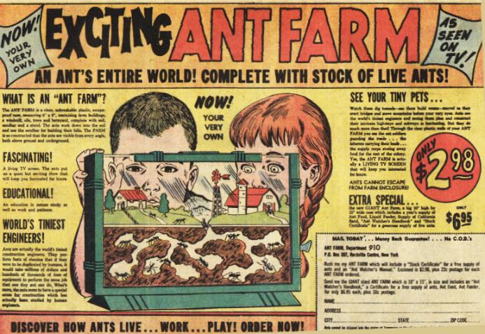COMICAD ant farm