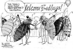 BedBugCartoon-300x200