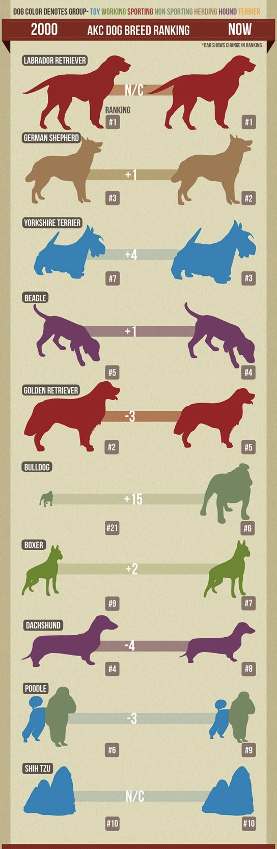 February 09, 2012. Most popular dog breeds in the U.S. — What's