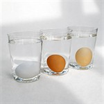 Old-eggs-03-20564