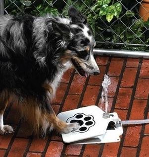 Doggie-Water-Fountain