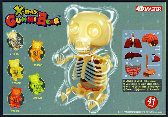 Gummi-Bear-Anatomy-Toys-are-coming