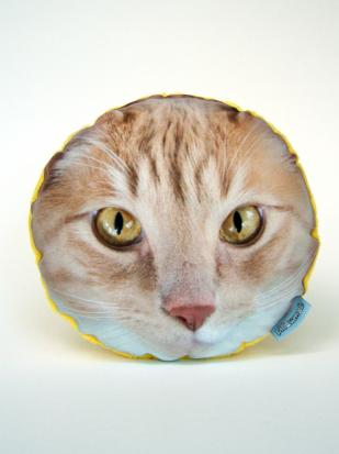 Pillow-head-archie-the-cat_309