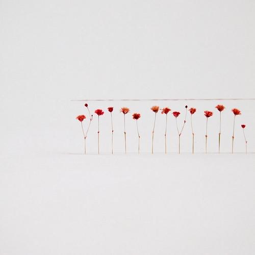 W500-H500-79900_flowers-2