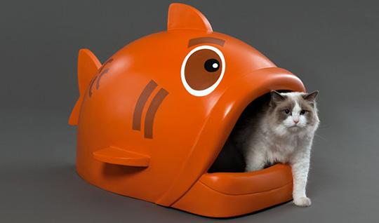 Litterfish1