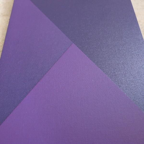 Violet_3_1