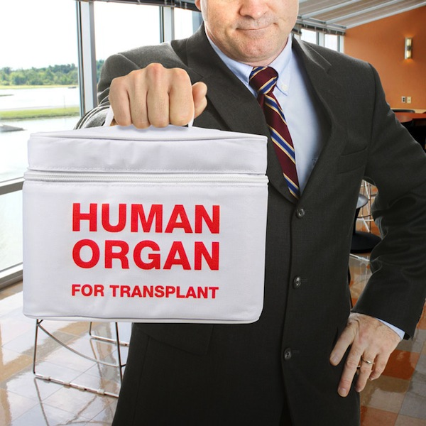 Human-organ-for-transplant-insulated-lunch-tote-xl