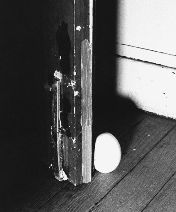 Oeuf_but_e_de_porte_blanc_-_visuel_ambiance