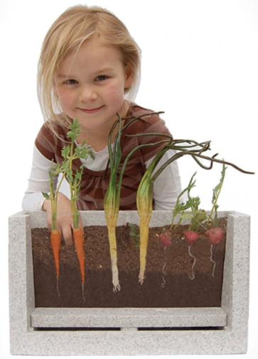 Root-Vue-Farm-Viewable-Root-Garden-2