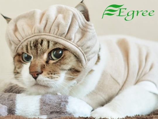 Egree-cat-hat-cap-1