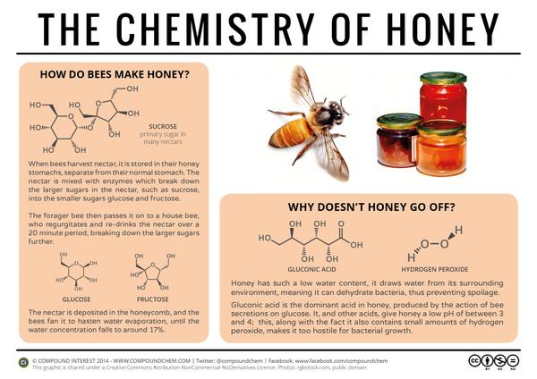 The-Chemistry-of-Honey-1024x724