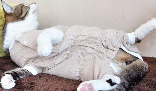 Egree-cat-pajama-loose-clothes-2