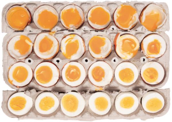 Egg flight copy