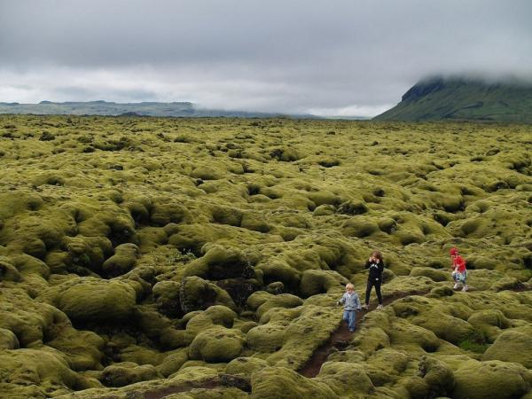 Mossy-lava-fields-iceland-76