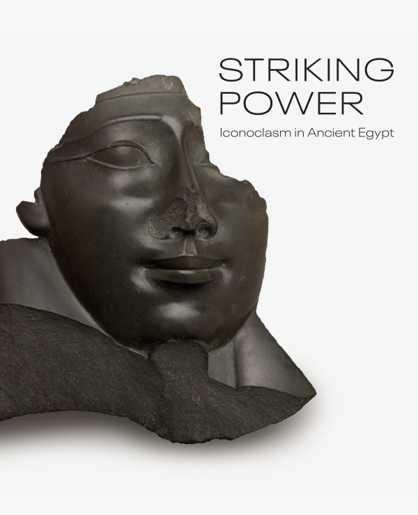 Striking-Power-Cover