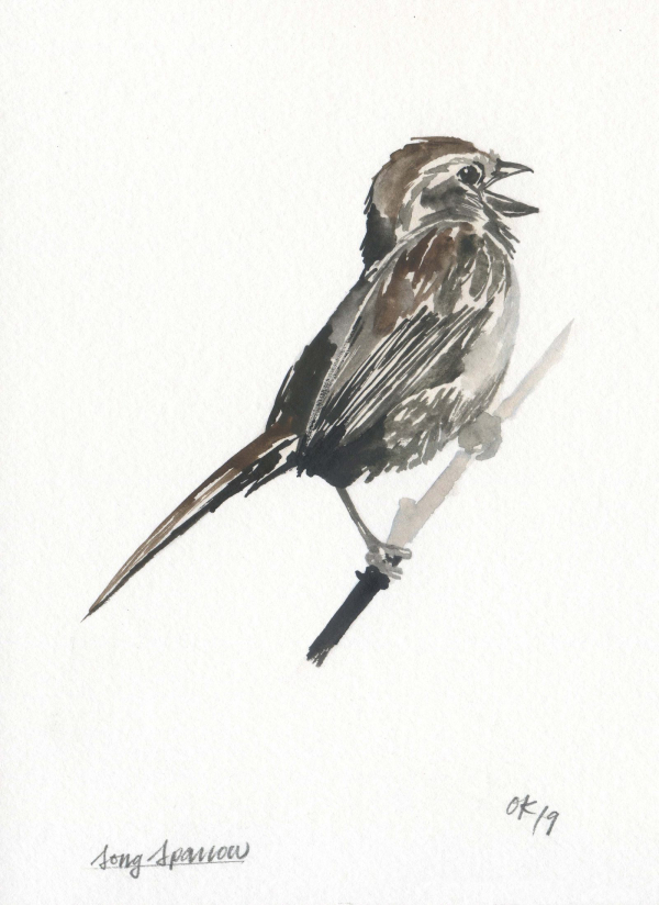 Sparrow_OK_WEB_2880_FINAL-1600x2198