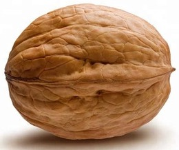 Walnuts-in-Shell-Vacuum-Packaged-25-Weight.jpg_350x350