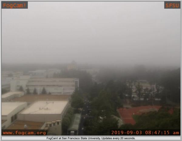 Screen Shot 2019-09-03 at 11.47.21 AM