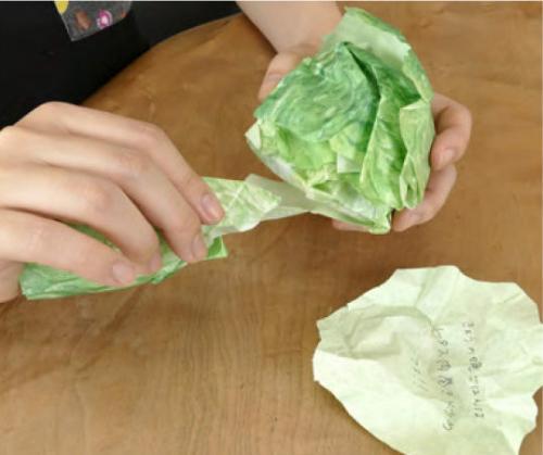 Geodesign-tokyo-kakeru-lettuce-notepad-1