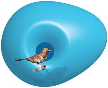 Birdhouse_1